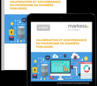 Valorisation et gouvernance du patrimoine de données publiques : vers l'âge de la maturité ? [e-Book]